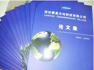 深圳雷曼光电应邀参加2010年全国LED显示应用技术产业发展研讨会